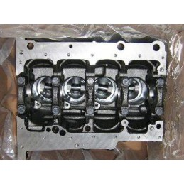 CYLINDER BLOCK WITH PISTONS